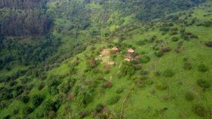 The Mulu Eco Lodge is located in of the last preserved forests of the area (about 50 ha forest). Since the Eco Lodge opened the farmers protect the forest and the wildlife there and dont cut wood for their fire at home anymore.